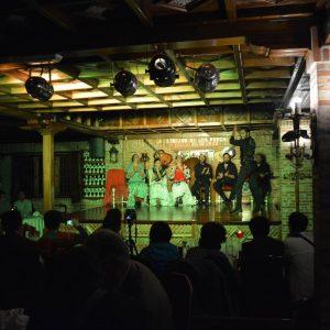 tablao de flamenco nocturno restaurante la estación de los porches