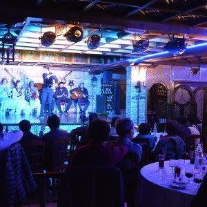 tablao flamenco nocturno restaurante la estación de los porches